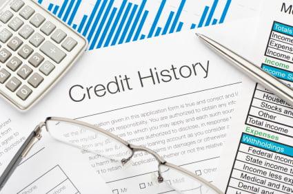 Credit History form
